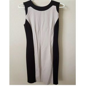 Calvin Klein Black and Tan sheath dress size 2
